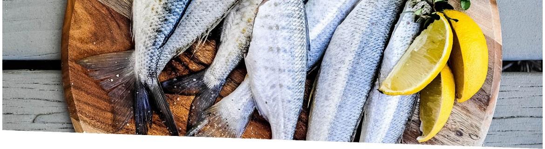 Pescados | El viejo Hortelano. Supermercado Ecológico