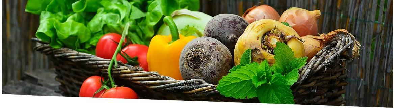 Verduras y Hortalizas | El Viejo Hortelano. Supermercado Ecológico